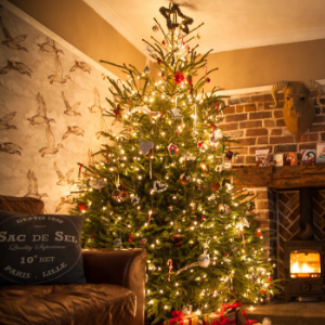 5 Christmas Tree Decorating Tips and Hacks (guest blog by Bex Massey)
