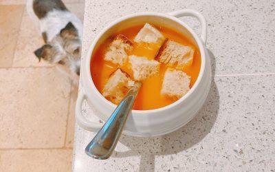Super Simple Butternut Squash Soup