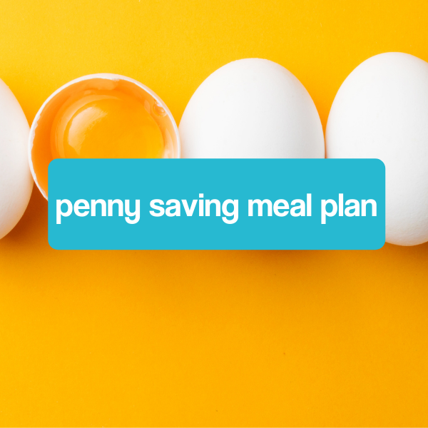 Penny Saving Meal Plan